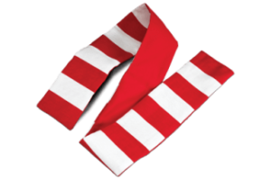 Opto-Kinetic Flag